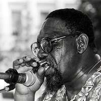 "Link to Sanders ""Sonny"" Terry"