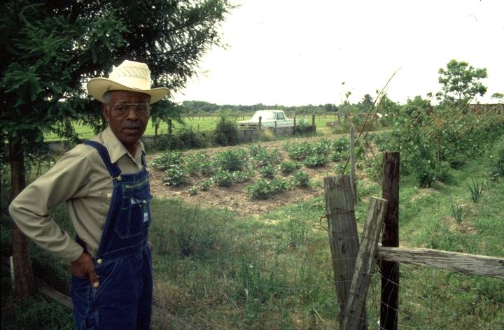 Alphonse 'Bois Sec' Ardoin, Eunice, Louisiana, 1992, photograph by Nicholas R. Spitzer