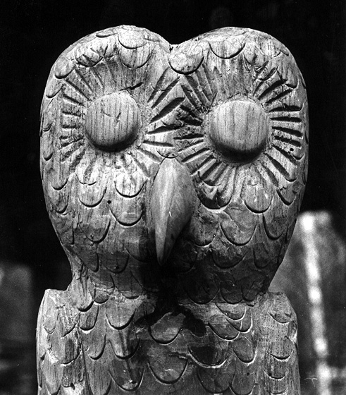 Carved Owl by Celestino Avilés, photograph by Walter Murray Chiesa