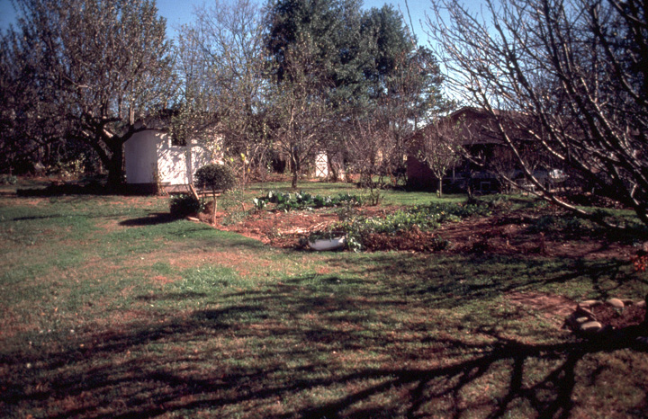 Etta Baker's house and garden, photograph by Leslie Williams, courtesy North Carolina Arts Council, Folklife Program