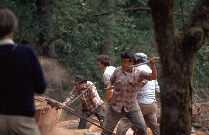 George Blake works with a crew to cut and gather logs for a dugout canoe, Redwood National Park, California, ca. early 1980s, courtesy National Endowment for the Arts