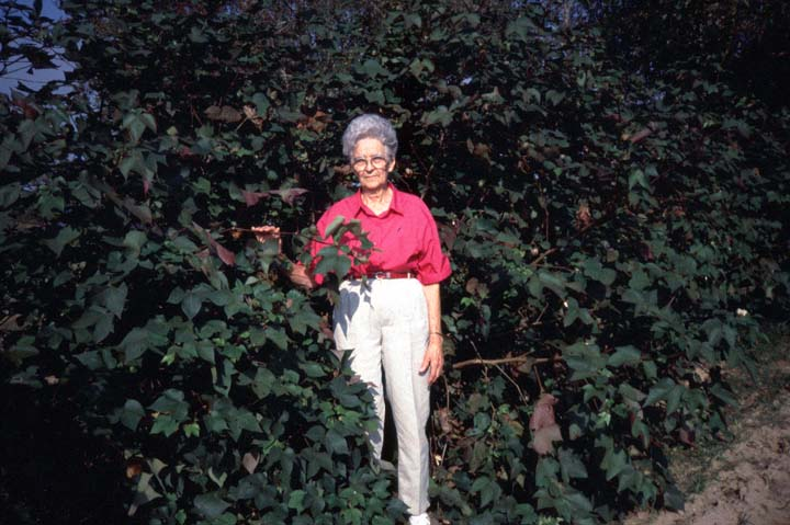 Gladys Clark in front of her home, Duson, Louisiana, November 1994, photograph by Audrey Bernard, courtesy National Endowment for the Arts