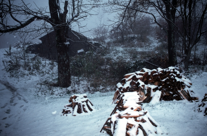 The landscape outside Ray Hicks' cabin, Banner Elk, North Carolina, 1991, photograph by Alan Govenar