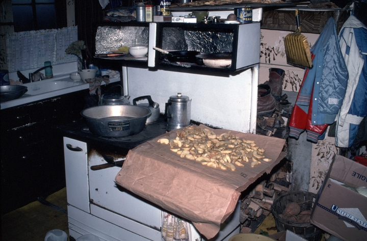 Apples drying in the kitchen of the Hicks' cabin, Banner Elk, North Carolina, 1991, photograph by Alan Govenar