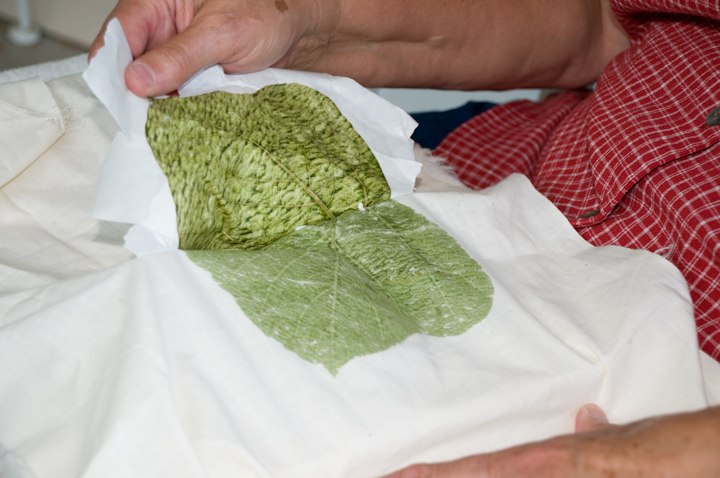 Dyed fabric from the kudzu leaves, Mt. Olive, Alabama, 2008, photograph by Alan Govenar