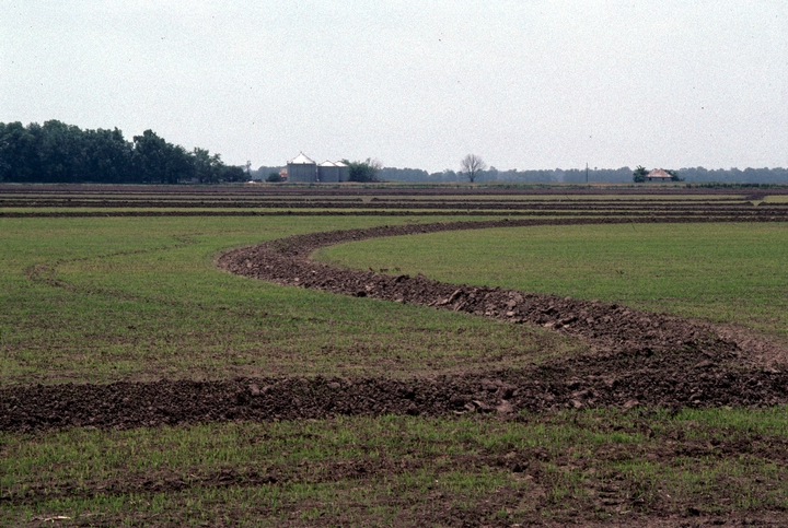 The Mississippi Delta, near B.B. King's birthplace, 1993, photograph by Nicholas R. Spitzer