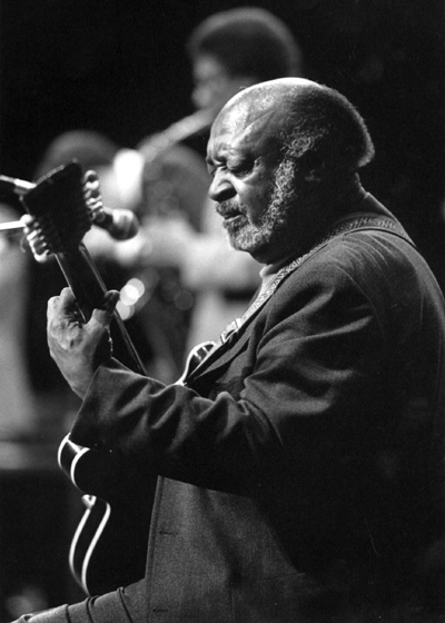Robert Jr. Lockwood, World Music Institute Blues Festival, New York, New York, 1989, photograph by Jack Vartoogian