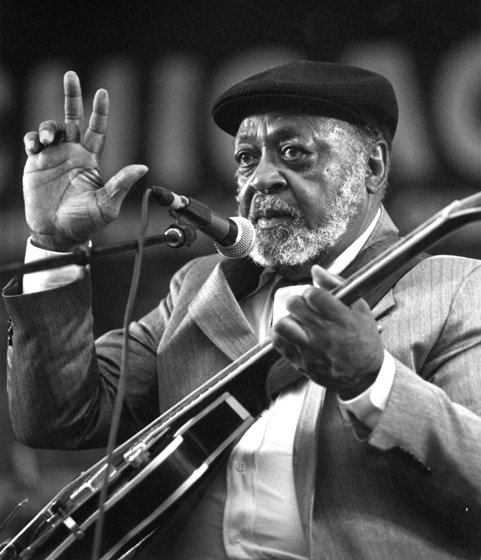 Robert Jr. Lockwood, Chicago Blues Festival, Chicago, Illinois, 1995, photograph by Jack Vartoogian