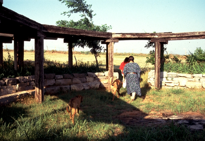 Traditional arbor in front of the home of Vanessa Paukeigope Morgan (now Jennings), Fort Cobb, Oklahoma, 1994, photograph by Georgetta Stonefish, courtesy Fred Nahwooksy