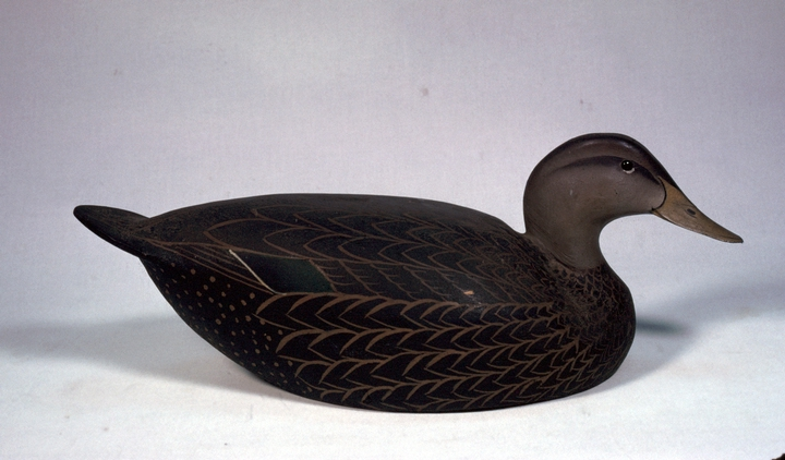 Black Duck decoy by Lem Ward, 1948, courtesy National Endowment for the Arts