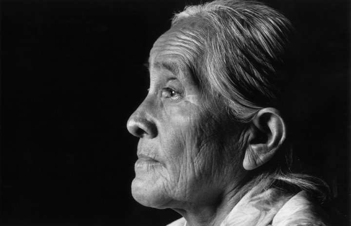 Grace Henderson Nez, photograph by Robert Alan Clayton, courtesy National Endowment for the Arts